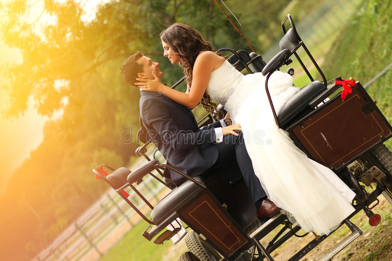Bride and groom in a carriage. Lovely day royalty free stock photography