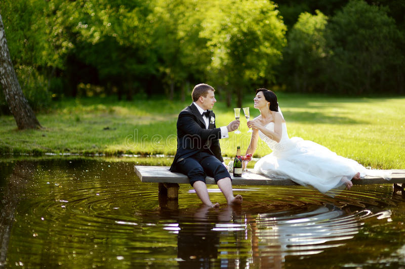 Download Bride And Groom Drinking Champagne Stock Images - Image: 29990434