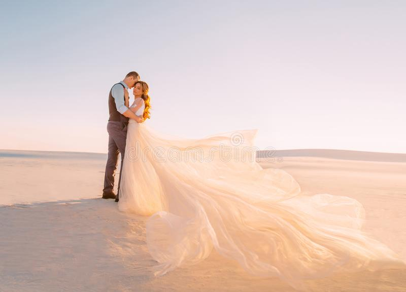 The bride and groom embrace in the warm sunshine at sunset. A beautiful, long train is blowing in the wind. Fine art royalty free stock image