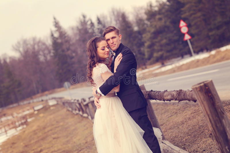 Bride and groom embracing near forest stock photography