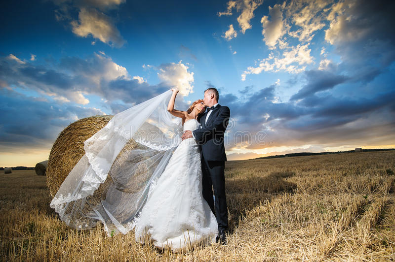 Bride and groom in the field. Bride and groom kissing at sunset