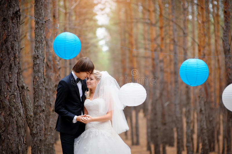 Bride and groom in forest stock images