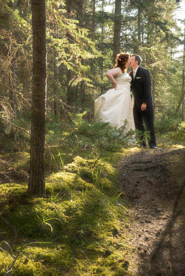 Bride and Groom in Forest with Soft Focus stock photography