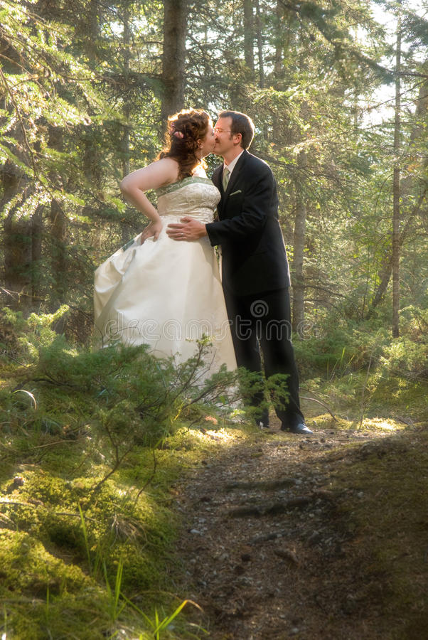 Download Bride And Groom In Forest With Soft Focus Stock Photo - Image: 10967780