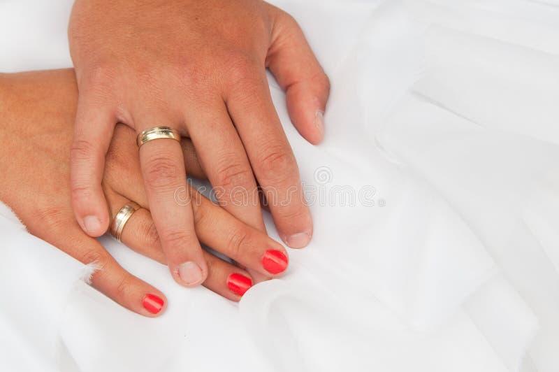 Download Bride and groom hands stock image. Image of elegance - 25381359