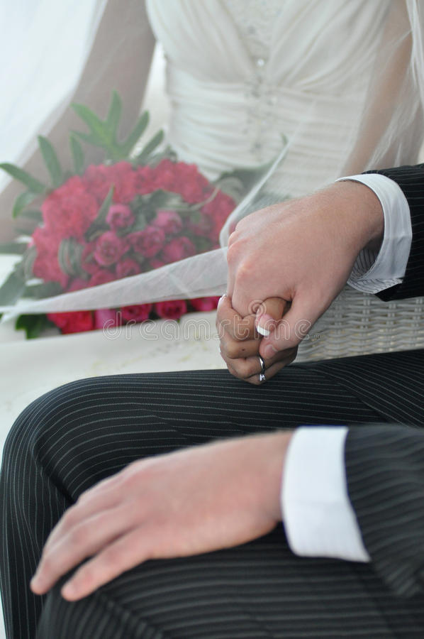Download Bride And Groom Holding Hands Stock Image - Image: 14723639