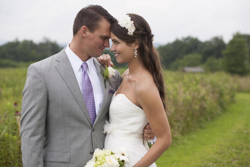 Download Bride and Groom stock image. Image of formal, intimate - 33249011