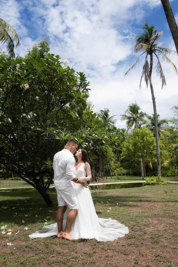 The bride and groom kiss near the blossoming exotic tree stock photos