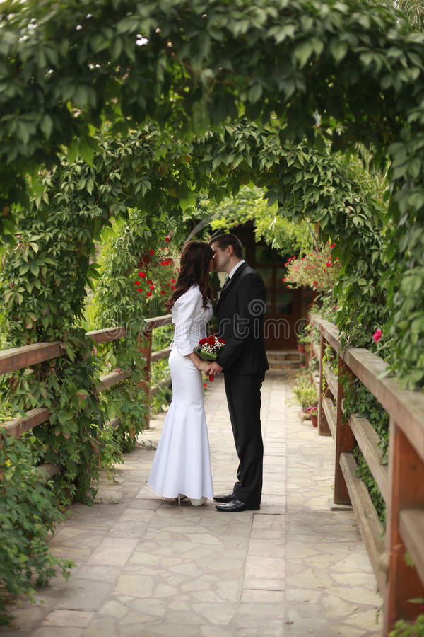 Download Bride And Groom Kissed In The Green Nature Stock Image - Image: 27120477