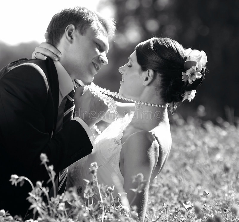 Download Bride and Groom in Love stock image. Image of wedding - 3944883