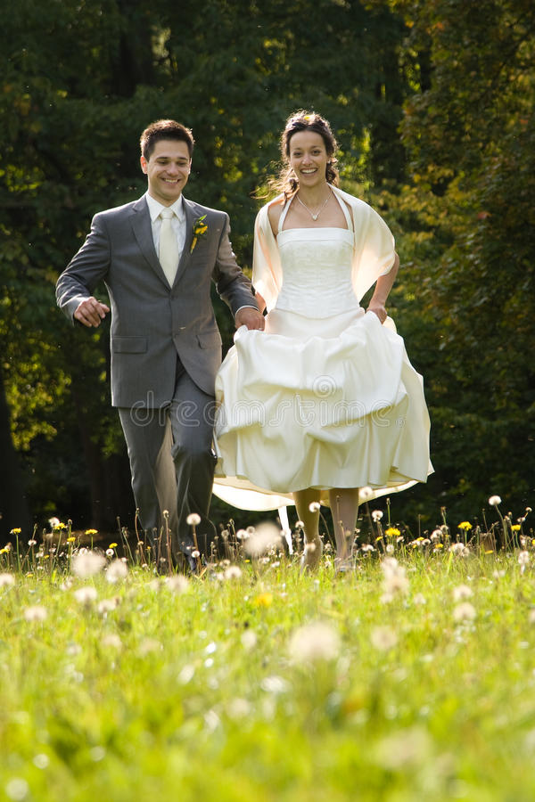 Bride and groom in meadow royalty free stock images