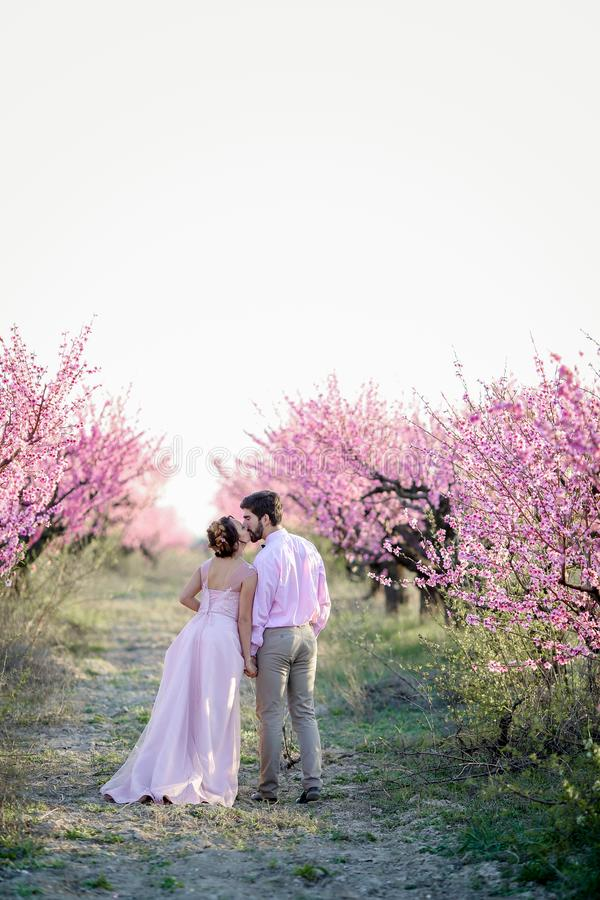 The bride and groom on the nature. The bride and groom on the nature stock images