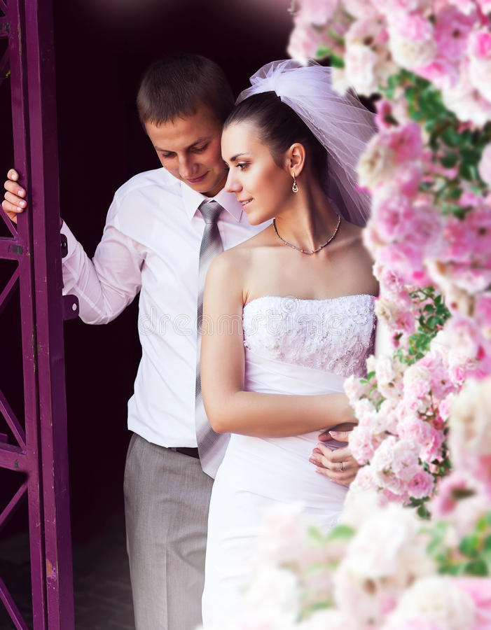 Bride and groom near pink roses royalty free stock image