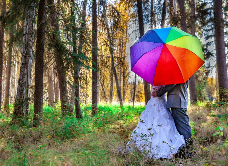 Bride and groom in outdoors during fall stock photos