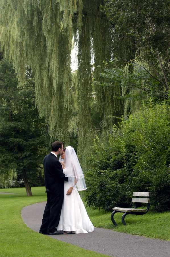 Bride and Groom in a park royalty free stock images