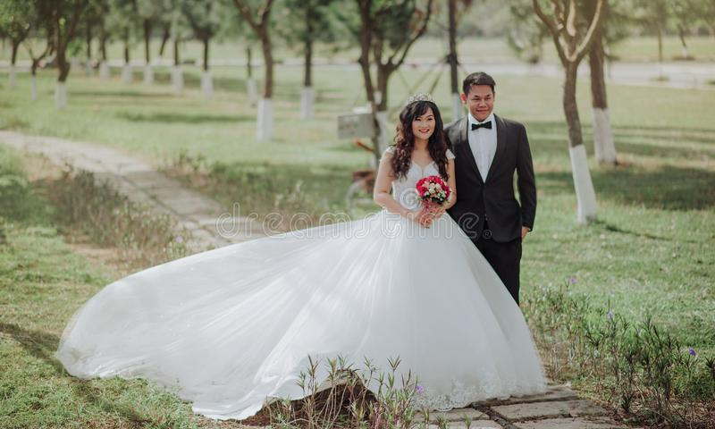 Bride and Groom Photo on Park royalty free stock image
