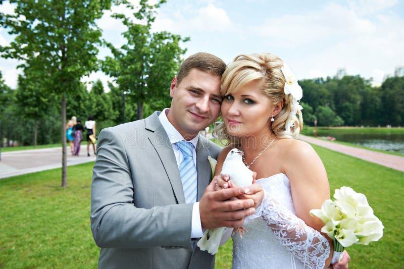 Bride and groom with pigeon on wedding walk