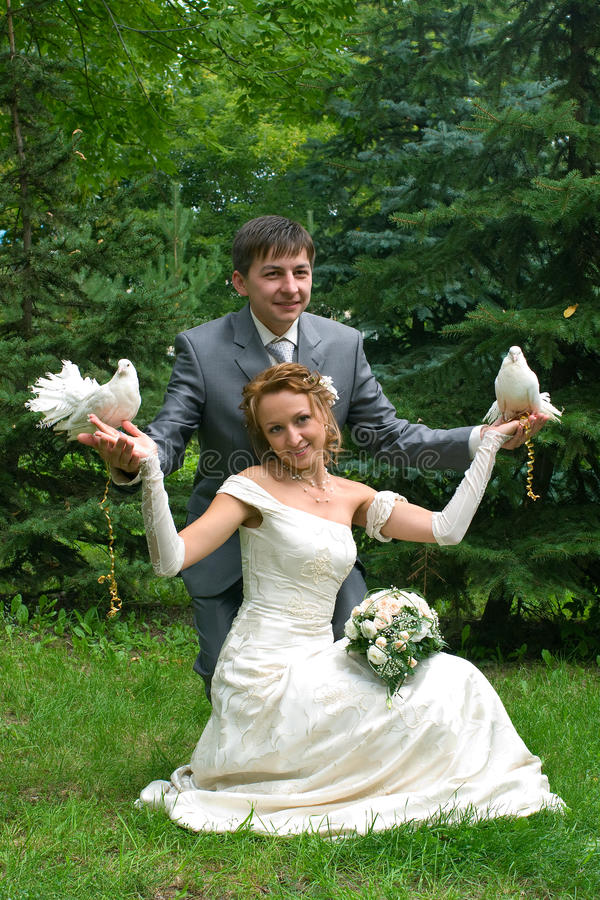 Download Bride And Groom With Pigeons Stock Photo - Image: 11125018