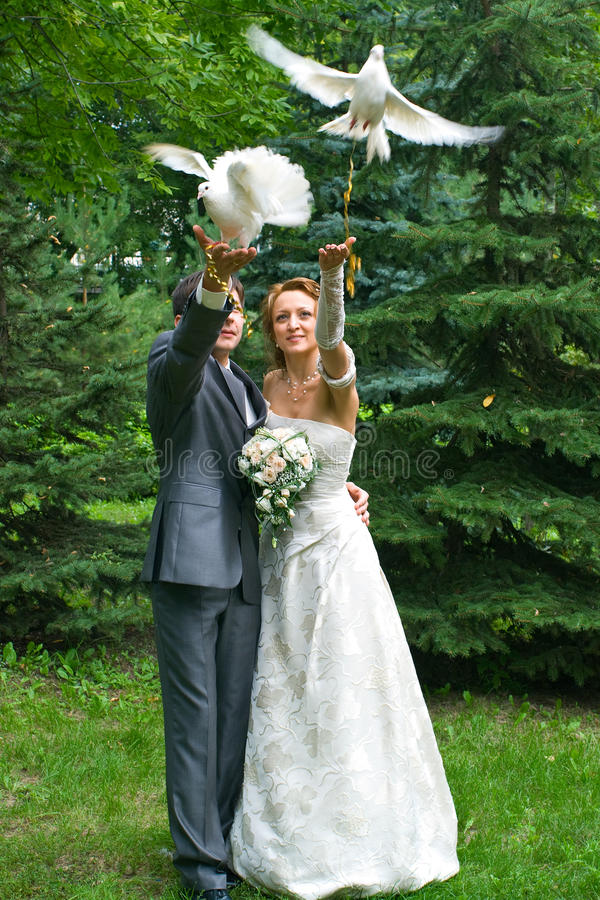 Download Bride And Groom With Pigeons Stock Photo - Image: 11163072