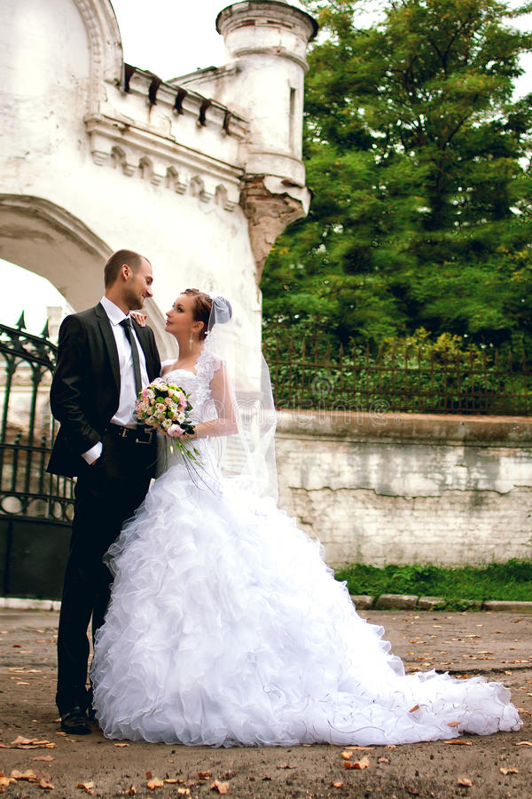 Download Bride And Groom Posing Near Castle Stock Image - Image: 28081427