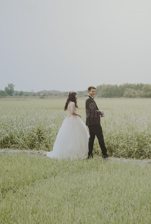Bride and Groom on Rice Field stock photos