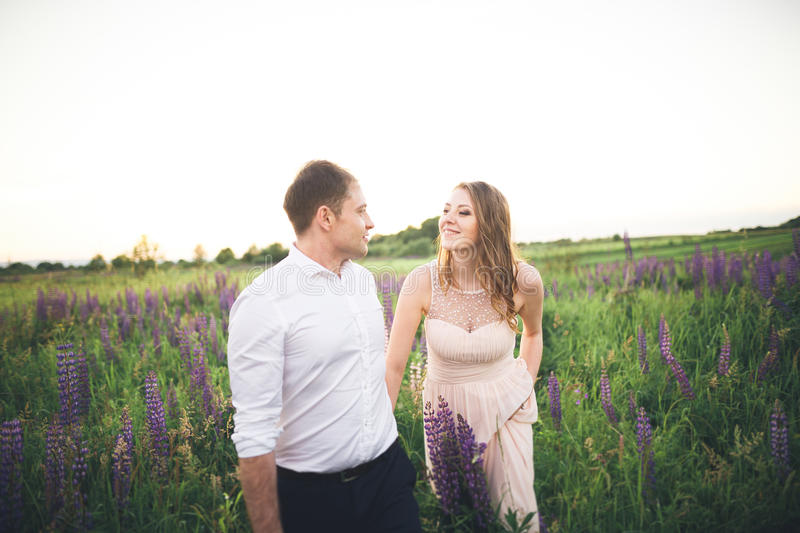 Bride and groom, rissing at sunset on a beautiful field with flowers, romantic married couple.  royalty free stock image