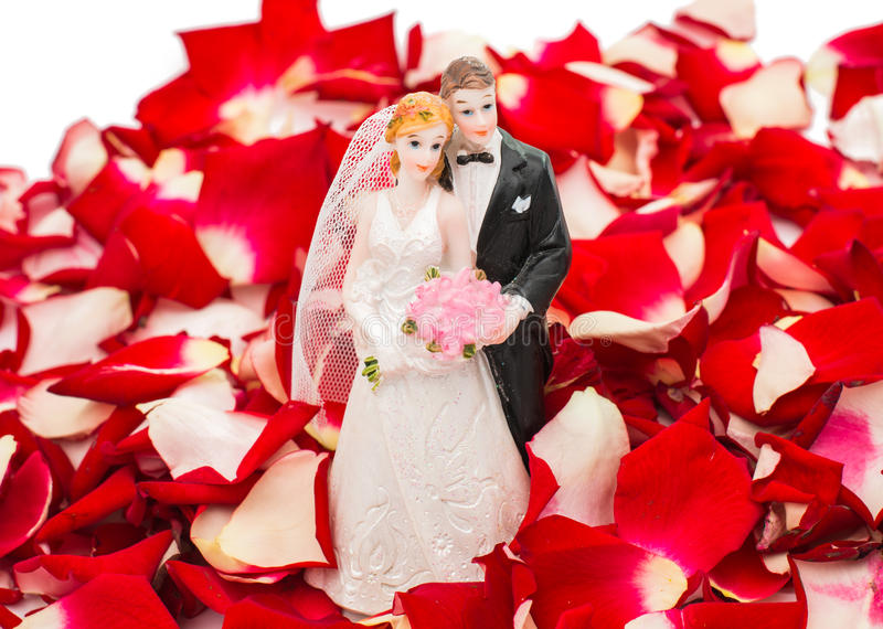 Bride and groom in rose petals royalty free stock photography