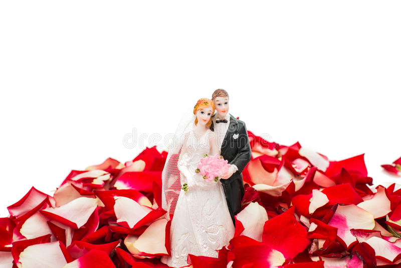 Bride and groom in rose petals royalty free stock images