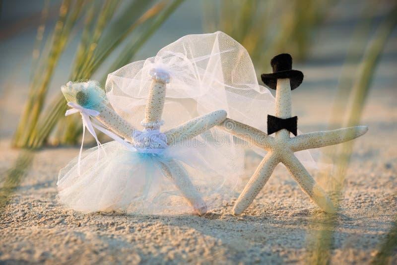 Bride and Groom Starfish royalty free stock image