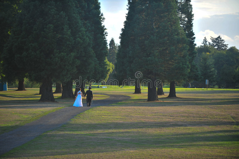 Bride and groom on a sunlit lawn. Bride and groom walking on a sunlit lawn stock images