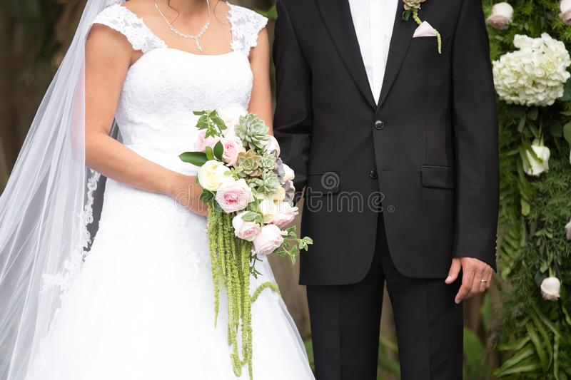 Bride and groom torso portrait royalty free stock images