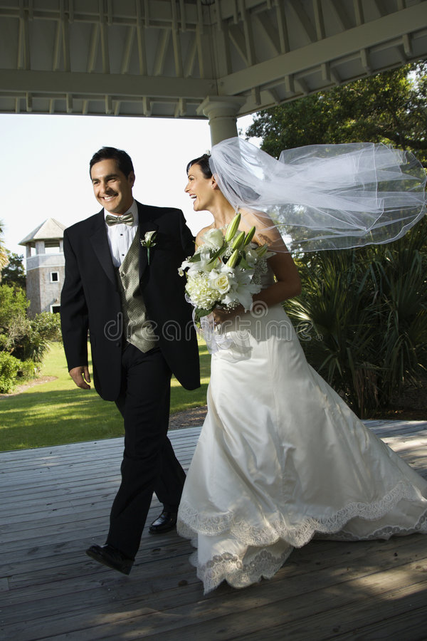 Download Bride and groom walking stock image. Image of veil, colour - 2046177