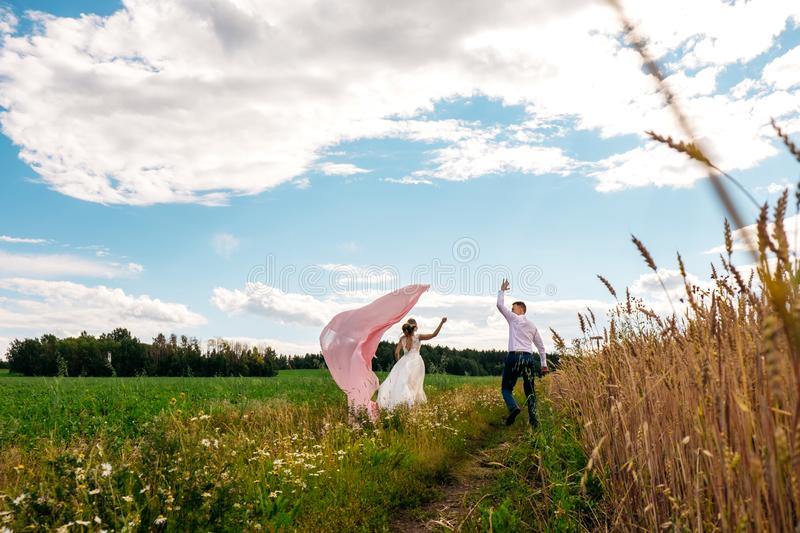 The bride and groom are walking around the wheat field stock photo