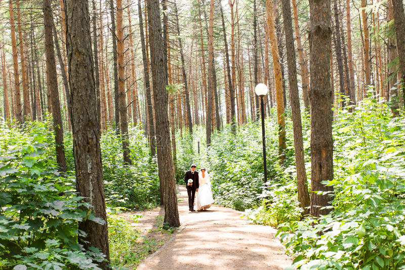 Bride and groom walking away in summer park royalty free stock photos