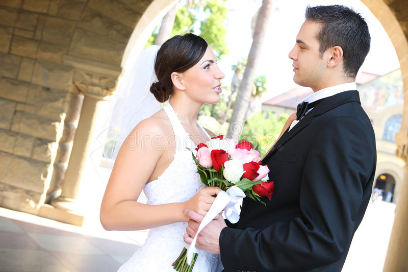 Download Bride and Groom at Wedding stock image. Image of gown - 5852821