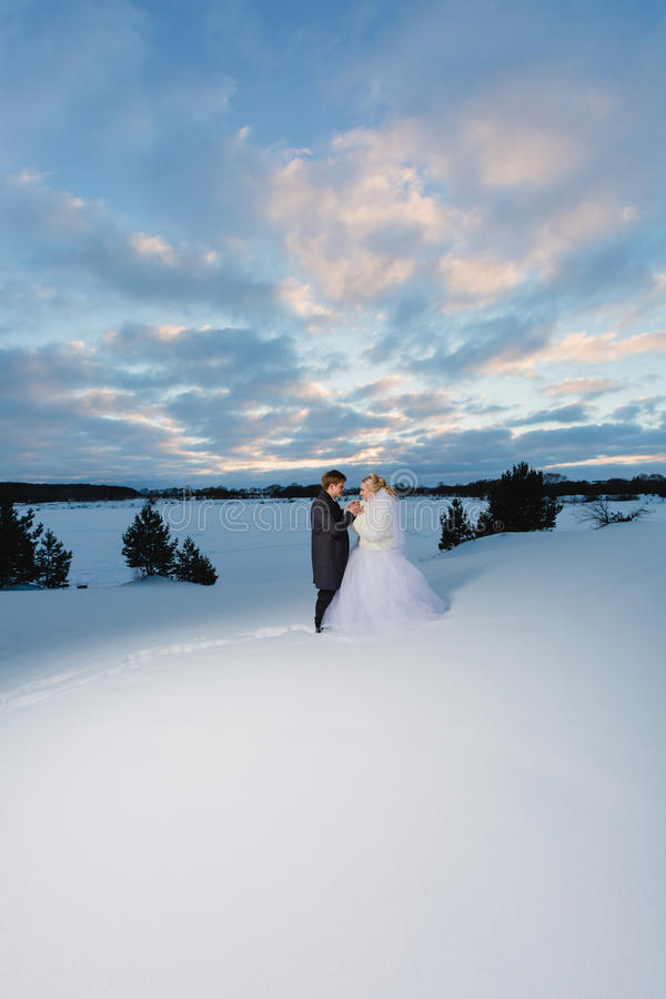 Bride and groom and winter lanscape stock photography
