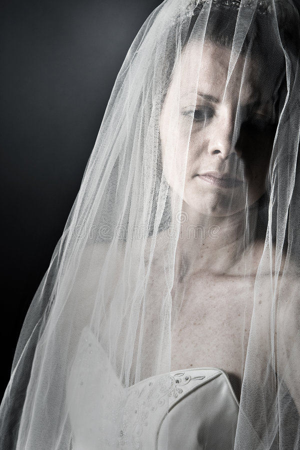 Download Bride in her Veil stock image. Image of thoughts, veil - 8865129