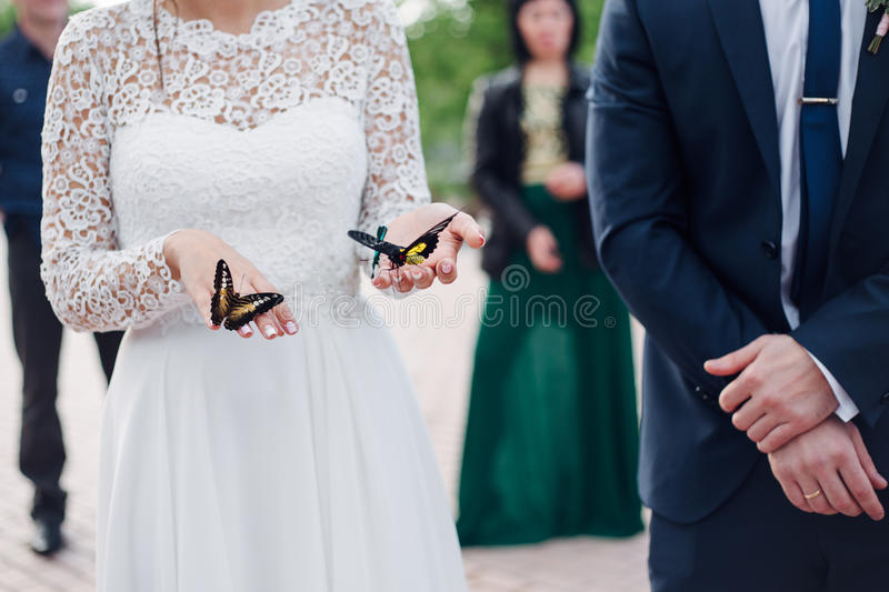 bride is holding a butterfly in hands royalty free stock images