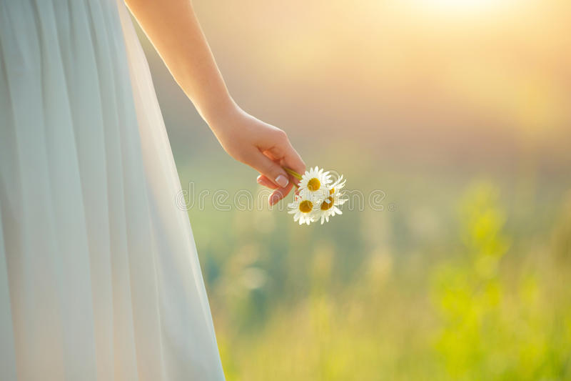 Bride holding daisies royalty free stock image