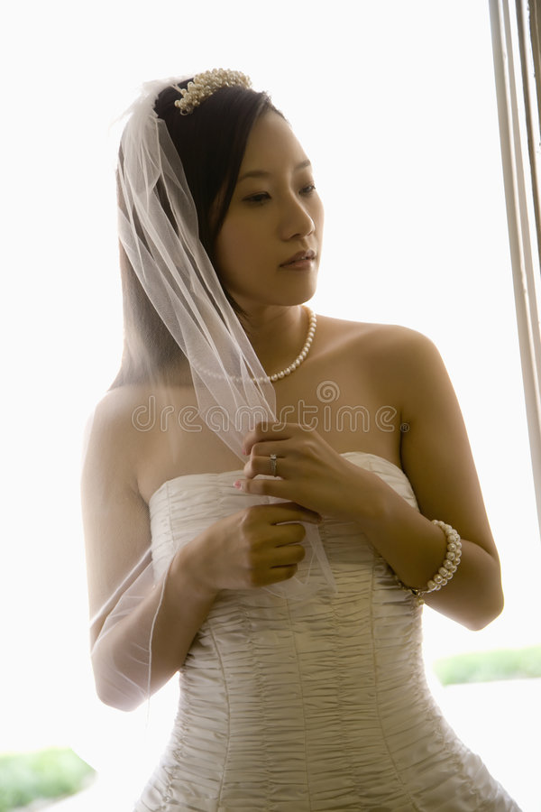 Download Bride Holding Veil. Stock Photography - Image: 2542742