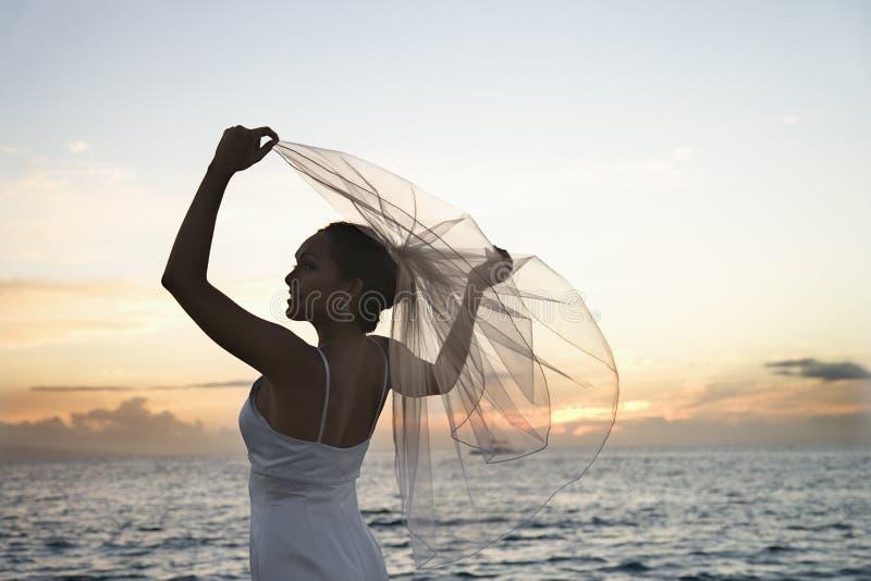 Bride holding veil on beach stock photography