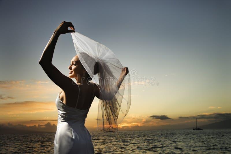 Bride holding veil on beach stock photos