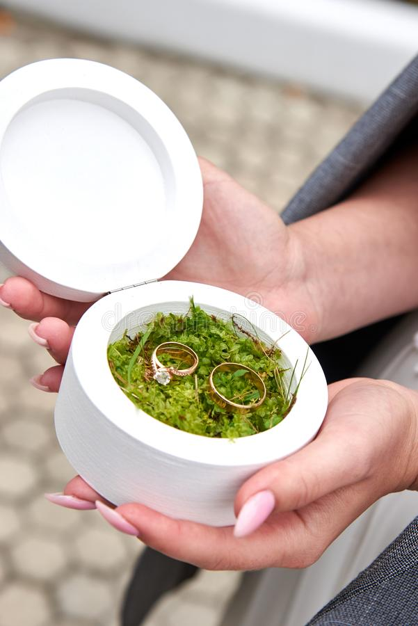 The bride holds a white box in which lie wedding rings on the moss. The bride holds a white round box in which lie wedding rings on the moss stock photos