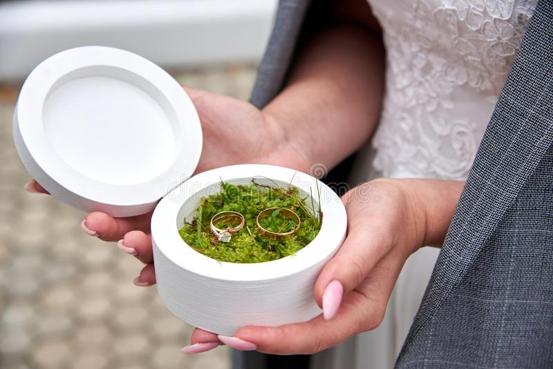 The bride holds a white box in which lie wedding rings on the moss. The bride holds a white round box in which lie wedding rings on the moss stock images