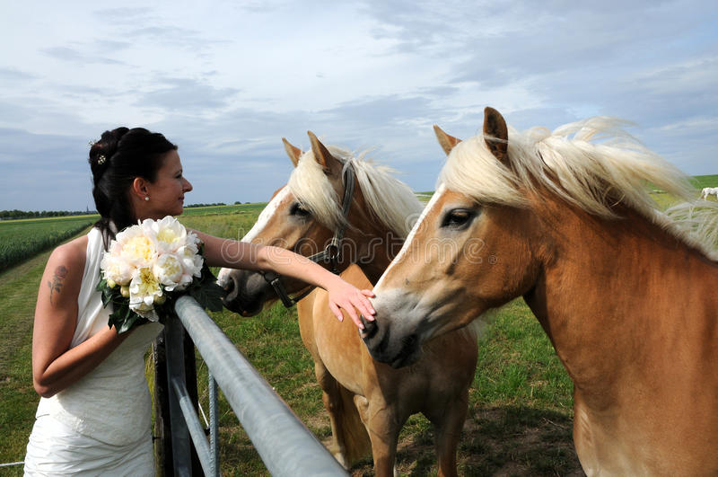Bride with horses stock image