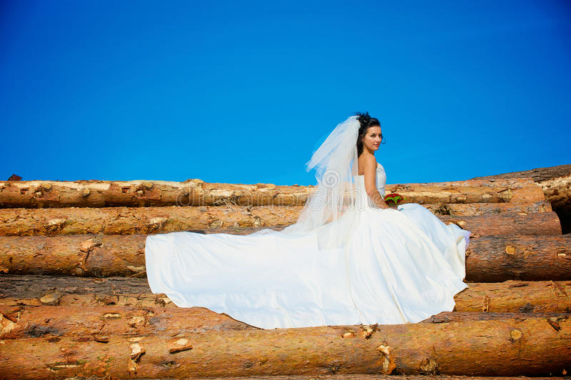 Bride on the log stock photography