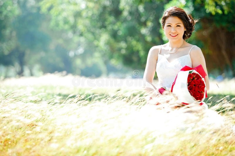 Bride On Meadows Field Stock Images