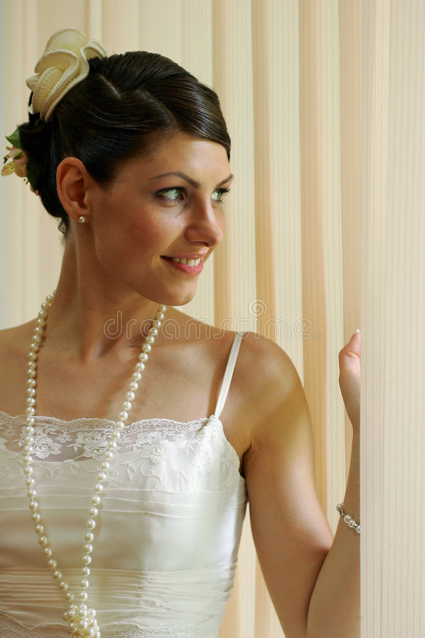 Free Bride On Wedding Day Royalty Free Stock Images - 4888869