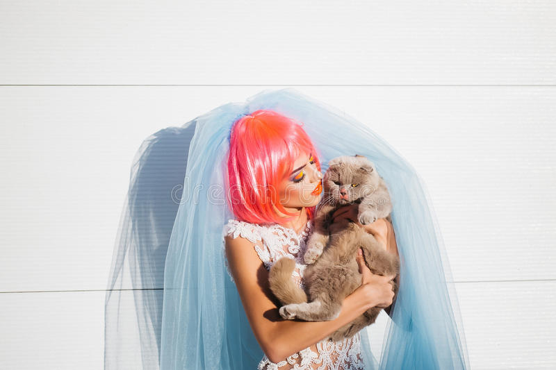 Bride with orange hair and cats. Young pretty woman with orange or pink hair and bright makeup on emotional face in white wedding dress and blue bride veil with stock photos