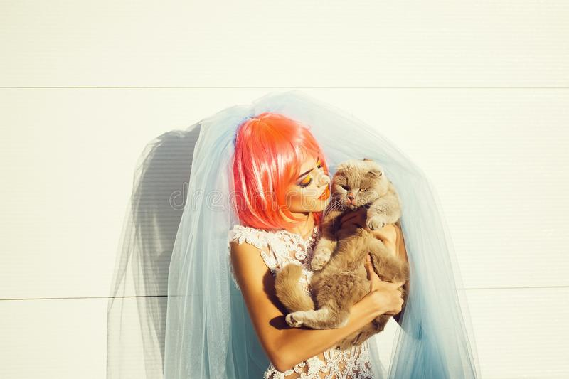 Bride with orange hair and cats. Young pretty woman with orange or pink hair and bright makeup on emotional face in white wedding dress and blue bride veil with stock image